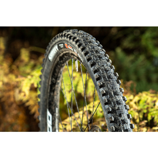 Maxxis Shorty 3C Exo tyre