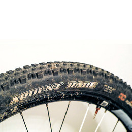 Maxxis Ardent Race 3C EXO TR tyre