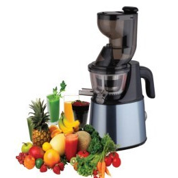 ElectriQ IQJuicer Whole Fruit Cold Pressed Slow Juicer - Stainless Steel Reviews