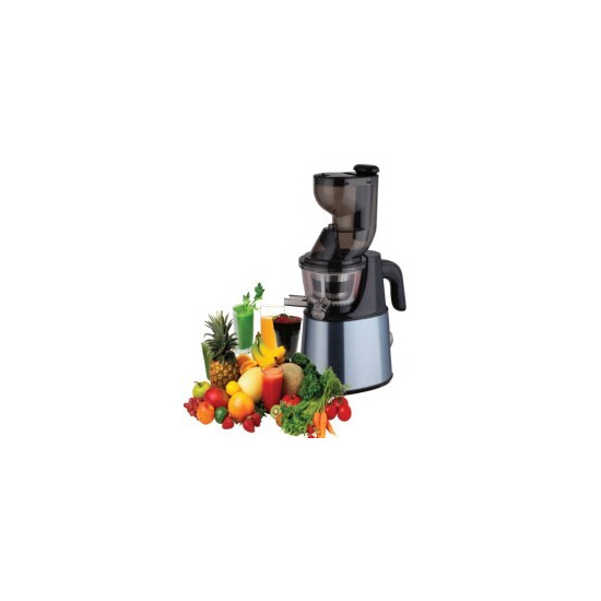 ElectriQ IQJuicer Whole Fruit Cold Pressed Slow Juicer - Stainless Steel