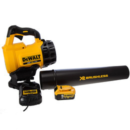 DeWalt DCM562P1-GB Reviews