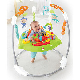 Fisher Price Rainforest Jumperoo Reviews