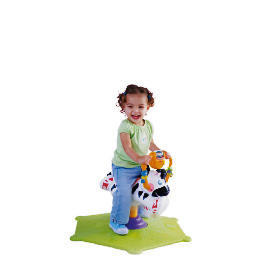 Fisher-Price Bounce & Spin Zebra Reviews
