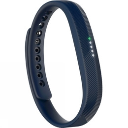 Fitbit Flex 2 Reviews