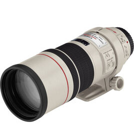Canon EF 300 mm f/4.0 L IS USM Telephoto Prime Lens