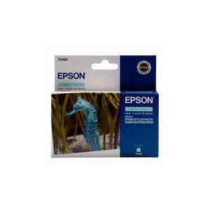 Photo of Epson T0485 Ink Cartridge