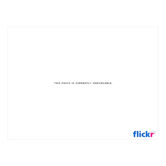 Flink MC001A