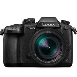 Panasonic Lumix DMC-GH5 Mirrorless Camera + Leica 12-60mm f/2.8-4.0 Lens