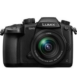 Panasonic Lumix DMC-GH5 Mirrorless Camera + 12-60mm f/3.5-5.6 Lens Reviews