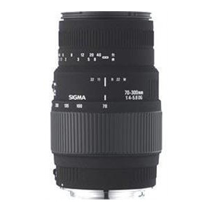 Photo of 70-300MM F/4-5.6 DG Macro (Nikon AF Including D40/D40X) Lens