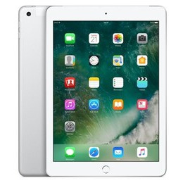 Apple iPad Wi-Fi + Cellular 32GB - Silver Reviews