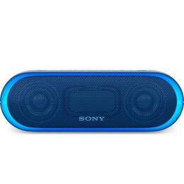 Sony SRSXB20 Reviews