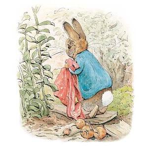 Photo of Peter Rabbit Beatrix Potter Book