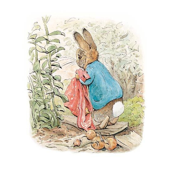 Peter Rabbit Beatrix Potter