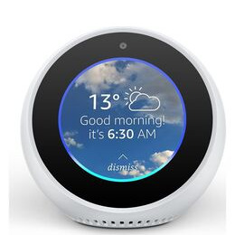 Amazon Echo Spot Reviews
