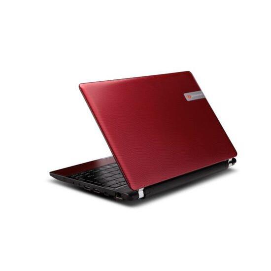 Packard Bell dot a-010UK