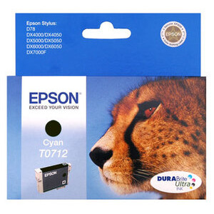 Photo of Epson T0711 - Print Cartridge - 1 X Black - 235 Pages Ink Cartridge