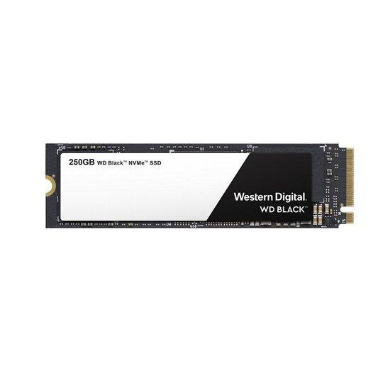 WD Black 250GB M.2 NVMe SSD