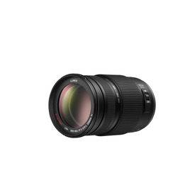 Panasonic Lumix G Vario 100-300mm F4.0-5.6 Reviews