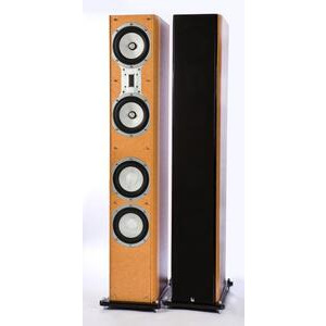 Photo of Roth OLi 50 Speaker