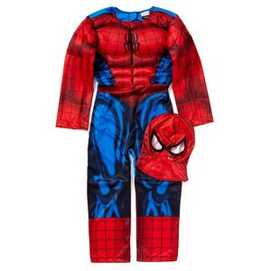 Photo of Spider-Man Costume Toy