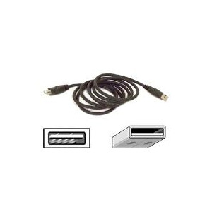 Photo of Belkin F3U134B06 Adaptors and Cable