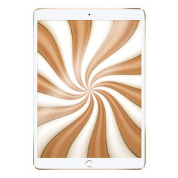 Apple 10.5 iPad Air (2019) - 256 GB Reviews