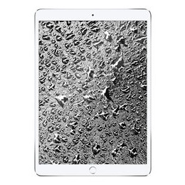 Apple 10.5 iPad Air Cellular (2019) - 256 GB Reviews