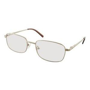 Photo of Titanium-Bonn Glasses Glass