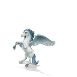 Pegasus Reviews