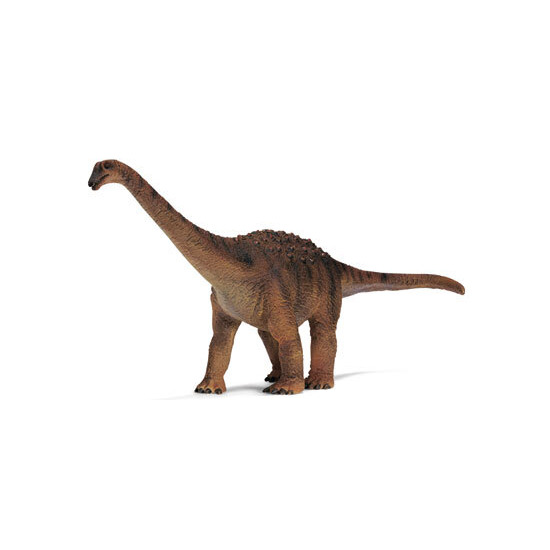 Saltasaurus Replica Saurus