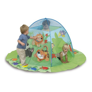 Photo of Fisher-Price Discovery Play Tent Toy