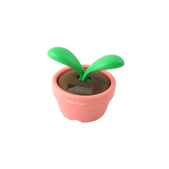 Pink Flip Flap Desk Plant