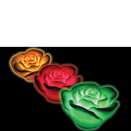 Floating Rose Spa Lights (3 Pack) Reviews