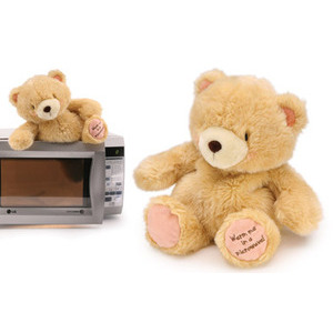 Photo of Microwaveable Teddy Bear Gadget