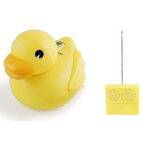 Photo of Radio Controlled Duck Gadget