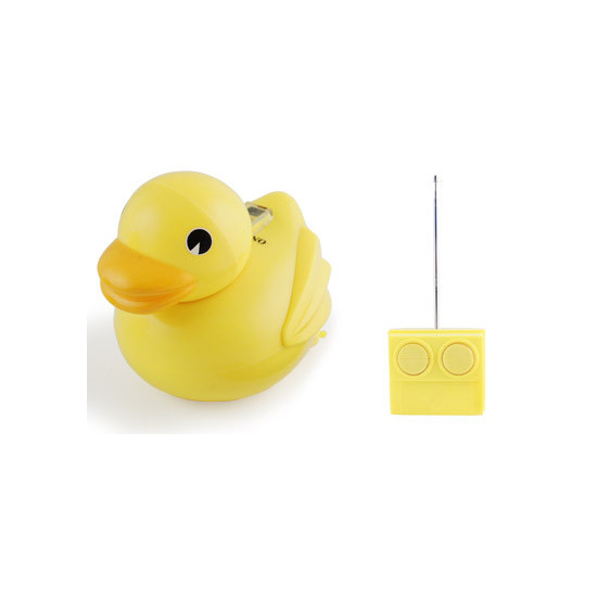Radio Controlled Duck