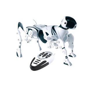 Photo of Robopet Gadget