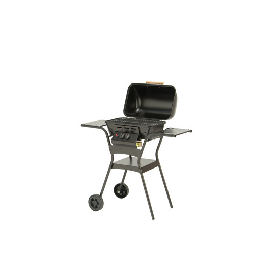 Lifestyle 2 Burner Gas BBQ with Hood