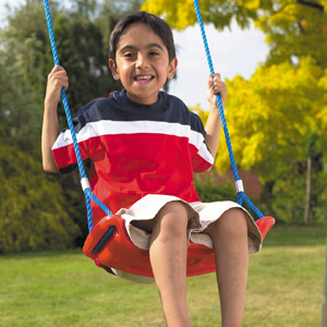 Photo of TP 870 Deluxe Swing Seat Toy