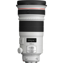 Canon EF 300mm f/2.8L IS II USM Reviews