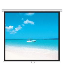 "Rollerwall 92"" Manually Operated Non Tensioned Projection Screen 16:9 Reviews"