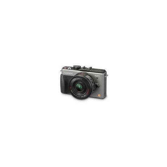 Panasonic Lumix DMC-GX1 with 14-42mm lens