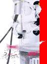Photo of MoPod Panda Gadget