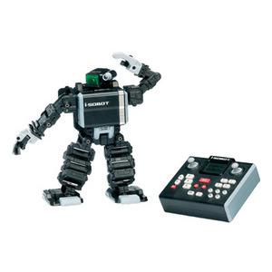 Photo of I-Sobot Toy