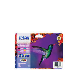 Epson T0807 multipack ink Reviews