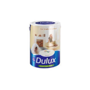 Photo of Dulux Silk Timeless 5L Home Miscellaneou