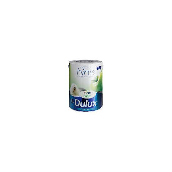Dulux Hints Matt Apple White 5L