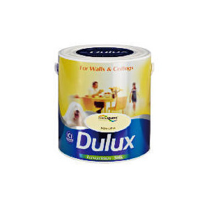 Photo of Dulux Silk Pale Citrus 2.5L Home Miscellaneou