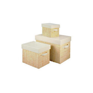 Photo of Rafia and Faux Leather Trunks Household Storage